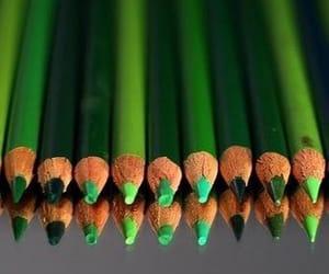 تفسير حلم اللون الأخضر في المنام لابن سيرين